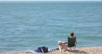 In der Nähe des Meeres zu wohnen verbessert die psychische Gesundheit: Hier der Beweis