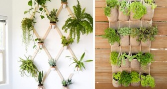 18 ingenious and elegant ways to create a garden even if your house is small