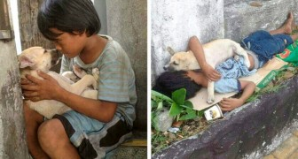 21 foto che raccontano una storia potente che ti farà commuovere