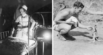 21 foto che ci mostrano fatti storici da un'angolazione a cui non siamo abituati