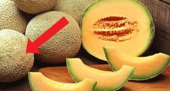 Hier sind einige nützliche Tipps, wie man sich genau die richtige Melone aussucht