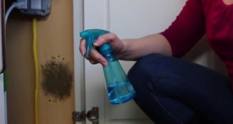 Mold in your house? Remove it with this effective home remedy!