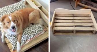 Ricavare Una Splendida Cuccia Per Cane Da Un Pallet Scopri