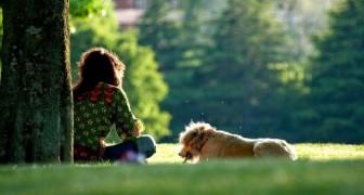Avere un cane allunga la vita: un maxi studio basato su 3 milioni di persone ha dato risultati insperati
