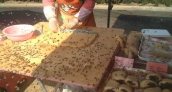 street cakes in china !