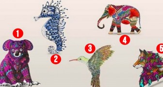 The animal that attracts you the most can reveal some aspects of your personality