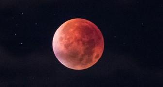 La Luna di Sangue del 27 luglio: uno spettacolo mozzafiato... con un partecipante a sorpresa