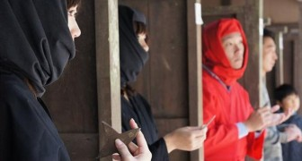In een klein Japans dorpje zijn ze wanhopig op zoek naar ninja's... en lijkt 85.000 dollar aan salaris nog niet voldoende stimulans om erheen te gaan