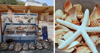 Hou je echt van de zee? Waarom je dan NOOIT souvenirs met zeedieren zou mogen kopen