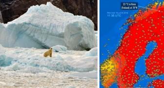 Temperature record al circolo polare artico: lo scioglimento dei ghiacci è a un punto di non ritorno
