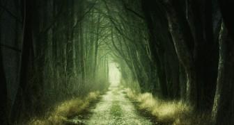 Breve test freudiano: che cosa si nasconde nella tua mente subconscia?