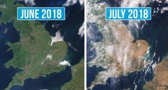 Queste foto satellitari ci mostrano interi paesi europei trasfigurati dal caldo e dalla siccità
