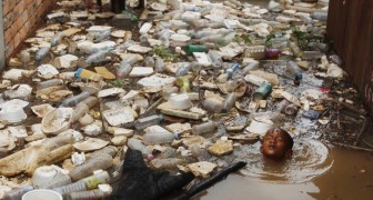 Das Zeitalter des Plastiks wird bald enden: Hier sind die Materialien, die es ersetzen werden