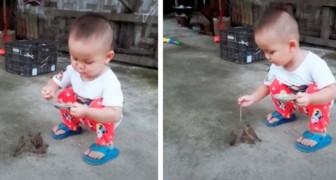 Un bambino di 3 anni sfama i suoi uccellini: il video che ha commosso milioni di persone