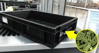 Er zitten meer bacteriën in de bakken bij de securitycheck op het vliegveld dan in een wc