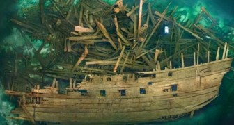 Gefunden wurde ein Schiff des sechzehnten Jahrhunderts: unglaublich gut erhalten
