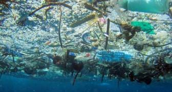 Plastik erstickt unseren Planeten: hier sind 10 Objekte, die Sie JETZT ersetzen können.