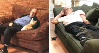 Questo volontario di 75 anni visita ogni giorno il rifugio per gatti... e schiaccia un pisolino insieme a loro