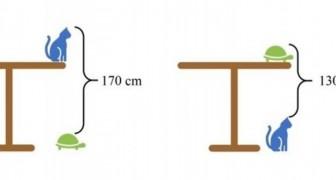 Quelle est la hauteur de la table ? La devinette proposée dans une école en Chine a mis en difficulté même les meilleurs élèves