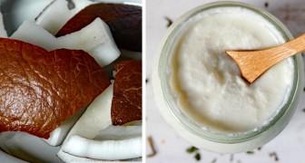 Come ottenere un gustosissimo yogurt al cocco completamente privo di latte
