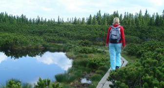 Ab heute können Ärzte in Schottland die Natur als Therapie verschreiben: was es bedeutet und welche Vorteile es bringt.