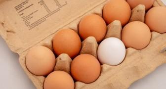 Sollen Eier im Kühlschrank aufbewahrt werden oder nicht? Warum sind sie im Supermarkt bei Raumtemperatur?