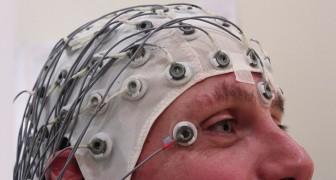 Per la prima volta gli scienziati sono riusciti a caricare la conoscenza in un cervello umano
