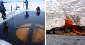 17 leuke feitjes over Antarctica die je zelden leest in aardrijkskundeboeken