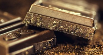Un composto nel vino rosso e nel cioccolato fondente inverte l'invecchiamento: ecco lo studio