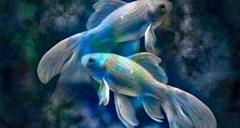 Alla scoperta dei Pesci: il segno zodiacale più generoso dello Zodiaco