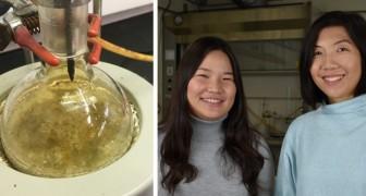 Ein 24-jähriges Mädchen entdeckt eine neue Art, Plastik abzubauen und von den Ozeanen fernzuhalten