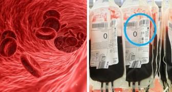 Si vous avez le groupe sanguin 0, voici quelques faits que vous devriez connaître