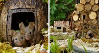 Um fotógrafo encontrou alguns ratos em seu jardim e decidiu construir para eles uma mini cidade