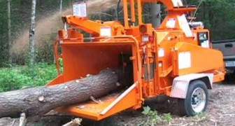 The impressive machine that crushes trees in seconds