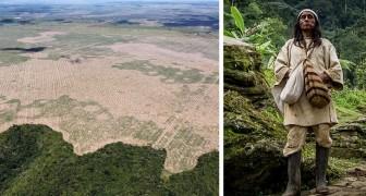 De inheemse volkeren van het Amazoneregenwoud gaan het grootste groene gebied ter wereld aanleggen en beschermen