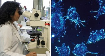 Er doen zich nieuwe mogelijkheden voor in de strijd tegen kanker want een vrouw wordt genezen met immuuntherapie
