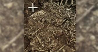 Der Schwarze Tod dezimierte die Bevölkerung im Neolithikum: Wissenschaftler entdeckten das Bakterium in einem Grab von vor 5000 Jahren