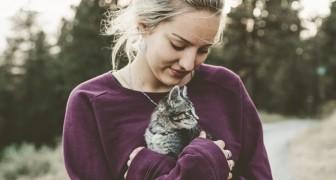 La meravigliosa influenza dei gatti sul nostro stato mentale