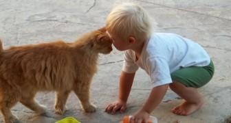 I bambini che crescono a contatto con animali domestici sono meno predisposti alle allergie: lo conferma la ricerca