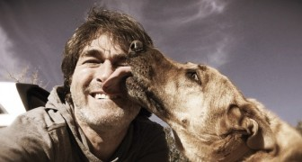 Perder um cachorro pode partir o coração da mesma maneira que perder uma pessoa que gostamos