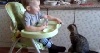 L'adorable bébé qui donne à manger à son ami le chat <3