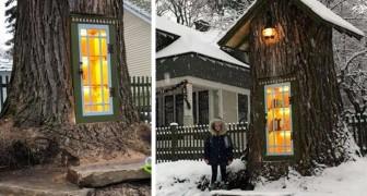 Deze vrouw maakt van een eeuwenoude boom een kleine bieb die er magisch uitziet