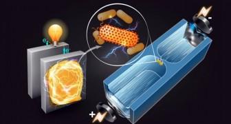 Gli scienziati arrivano ad una svolta nella ricerca dei batteri produttori di energia
