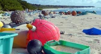 Da Patrimonio dell'Umanità a discarica a cielo aperto: il triste declino dell'Isola di Henderson