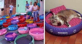 Dieser junge Mann hilft der Umwelt auf kreative Art und Weise: Er verwandelt alte Reifen in Schlafplätze für Hunde und Katzen