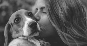 O meu cachorro não é o meu animal doméstico, é parte da minha família
