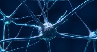 Un team di scienziati è riuscito a convertire direttamente i segnali del cervello in parole