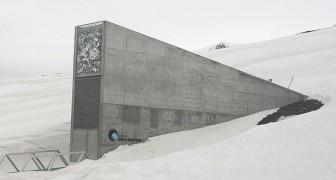 De Wereldzadenbank in Noorwegen loopt een serieus gevaar: de permafrost die de monsters bewaart, dreigt te smelten