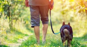 Camminare è il modo migliore per curare l'anima dalle energie negative