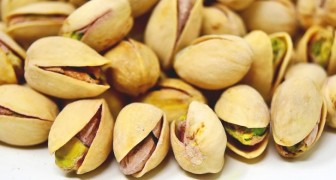 10 välgörande effekter av pistage som du inte kände till